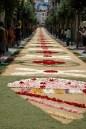 street of flowers