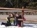 girls on fence