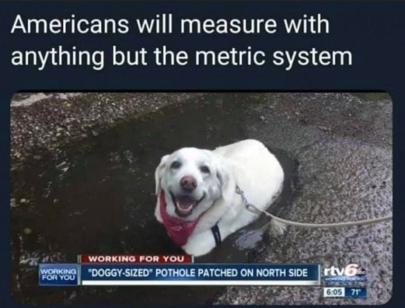 dog meme | american will measure with anything but the metric system working for you doggy sized pothole patched on north side | screenshot from a news report happy dog with red bandanna around its neck sitting inside a pothole