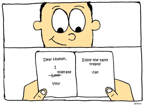 Comics about how a cat celebrates Valentine's day | comic illustration drawing of a person smiling while opening a note that reads Dear Human, Enjoy tasty treats! tolerate -cat Love iizcat