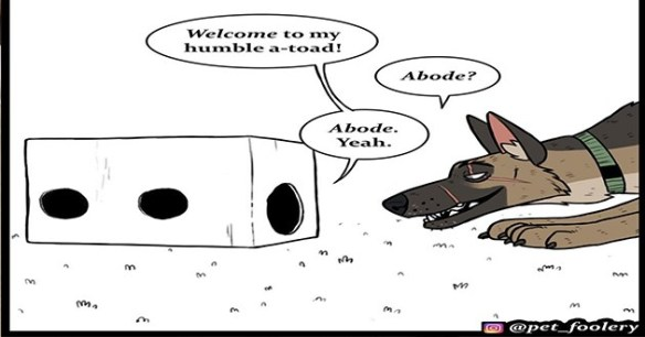 cats pixies brutus comic aww animals wholesome cute | art drawing illustration big dog and tiny kitten Welcome my humble -toad! Abode? Abode. Yeah. O @pet_foolery