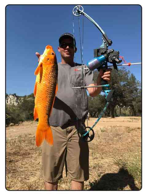 Lake Cachuma Bow Fishing