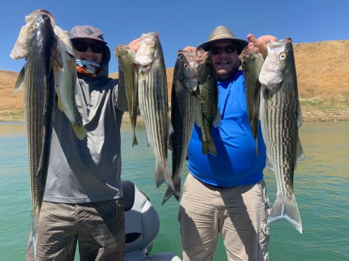 Castaic Lake Fishing Guide Service 8/22/2019
