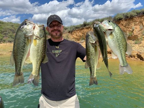 Southern California Bass Fishing Guide's Report 05/19/2020