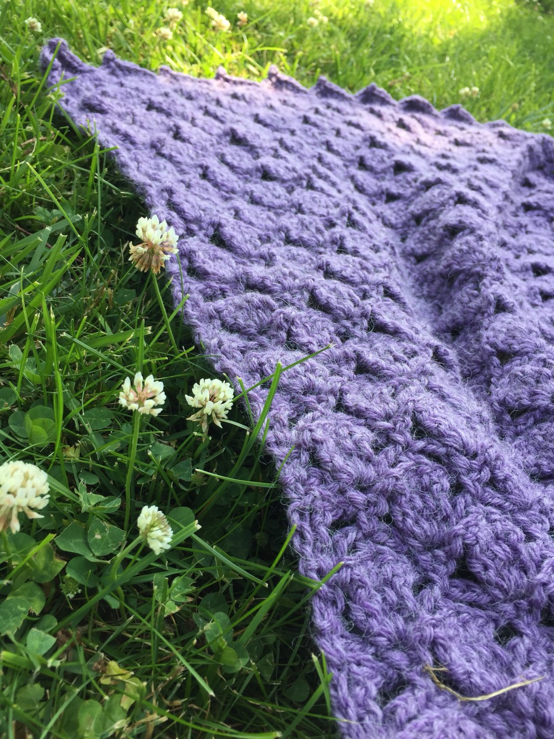 clover meadows blanket