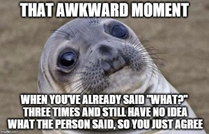 meme of a seal's face:that awkward moment when you've already said