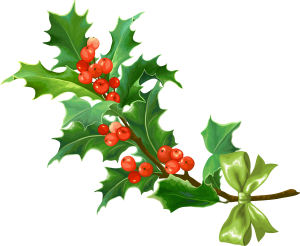 a bough of holly