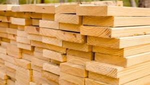 lumber english