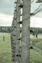 Oändliga längder med taggtråd