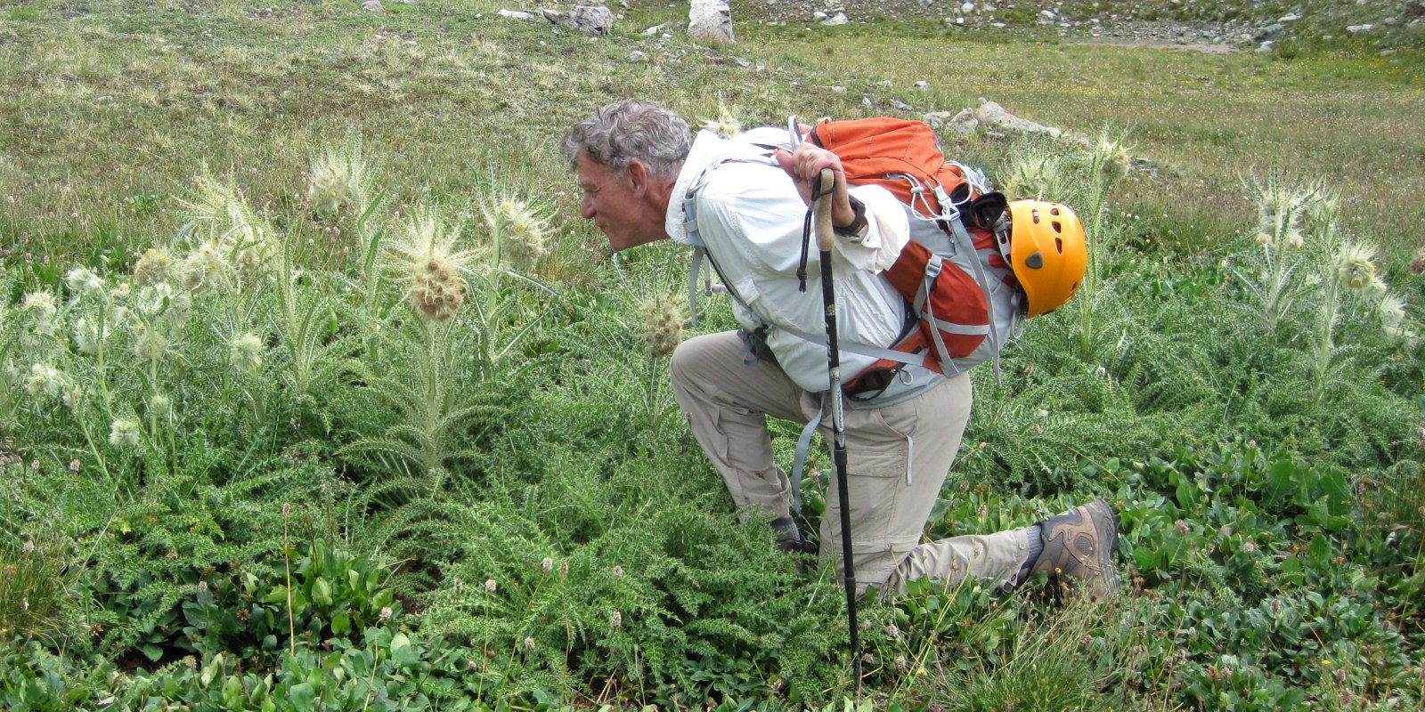 Photograph of Rick Crandall kneeling to smell a large thistle.