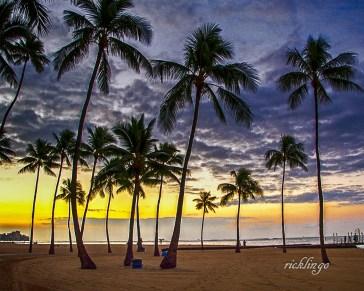 "Honolulu, Hawaii, Featured photo on main page of Greater Cincinnati Photographers Club. 2nd prize winner in Outdoor Colors challenge on international website Pixoto. Winner of ""All Star"" Peer Award on international website ViewBug."