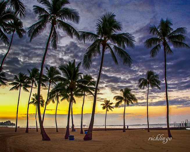 "Honolulu, Hawaii, Featured photo on main page of Greater Cincinnati Photographers Club. 2nd prize winner in Outdoor Colors challenge on international website Pixoto. Winner of ""All Star"" Peer Award on international website ViewBug."