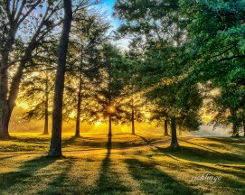 """Independence, Kentucky. Winner of """"Sunlight and Long Shadows"""" challenge on international website Viewbug, 2nd place in """"Good Morning World"""" challenge on international website Pixoto. Expert Commended in """"Smartphone"""" contest on international website Phototcrowd. """"Photo of the Day"""" on the website capturecincinnati.com. Selected for """"Cellular Photo"""" exhibition at Mohawk Gallery."""