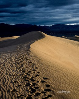 "Mesquite Dunes, Death Valley, California. 10th place in ""Landscapes"" on international website Pixoto."