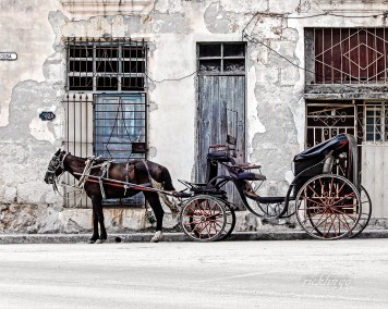 "6th place award for the day in ""Transportation"" on international website Pixoto."