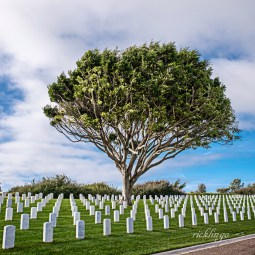 "Fort Rosecrans, California. 10th place award in ""City, Street, Park"" on international website Pixoto."