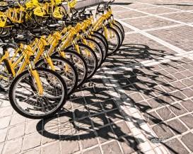 "3rd place in ""Transportation"" on international website Pixoto."