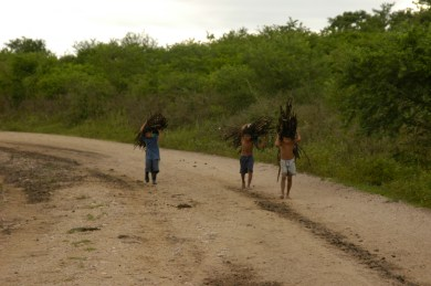 Nicaraguan boys carrying firewood to sell