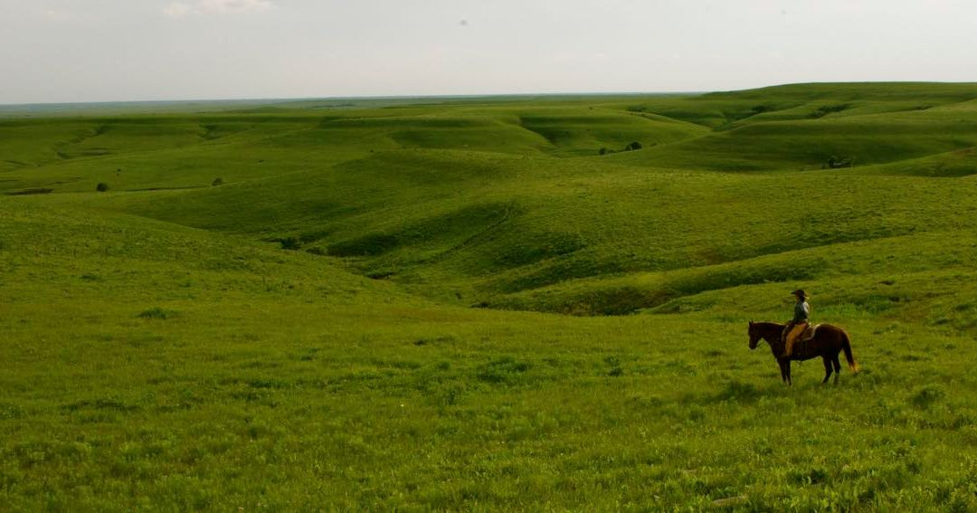 Voices on the Prairie: What I Learned While Writing My First Novel