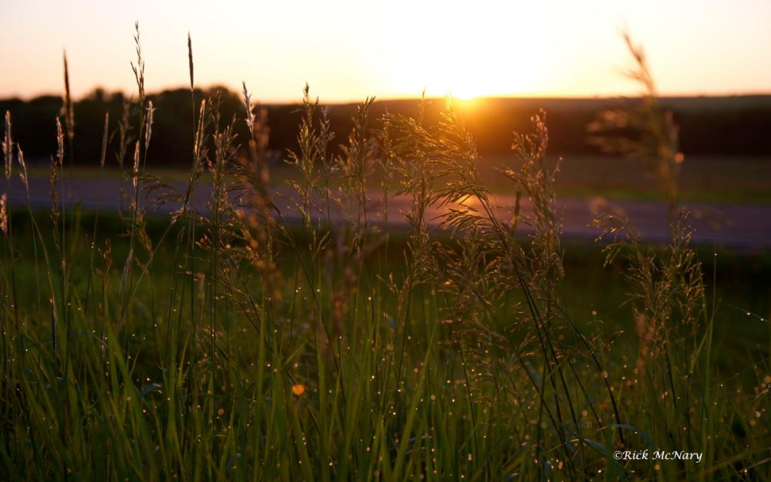 A Photo Journey: Tallgrass Prairie National Preserve