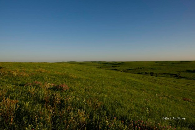 A Flint Hills Prairie Morning