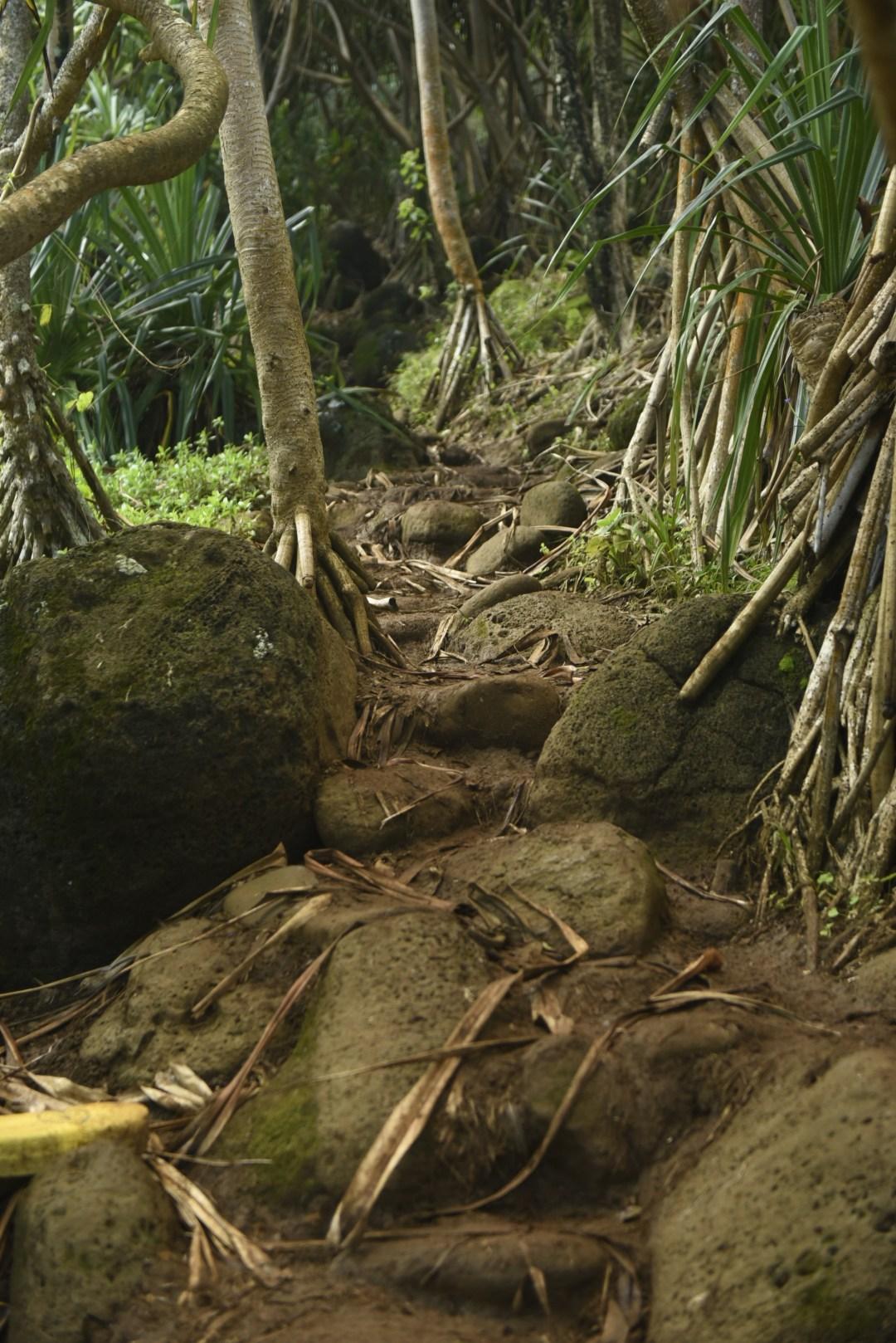 Hanakapiai Trail