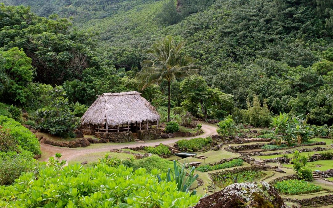 Photographing Limahuli Garden: A Travel Journal of Kauai
