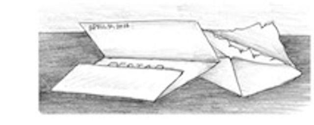 DPE Letter 2038copy copy