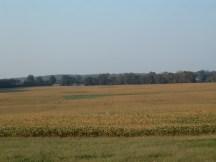 Ohio Crop Field