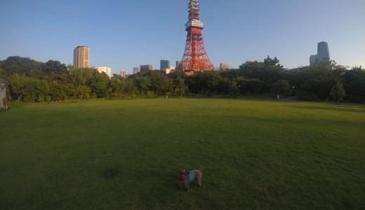 GoPro撮影してみました