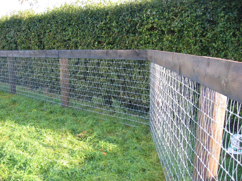 Mesh Fencing Wire Rickyhil Outdoor Ideas
