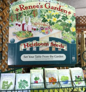 somerville-spring-renees-garden-seeds-rickys-union-square1