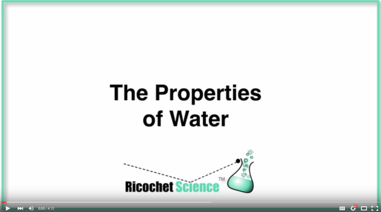 Video: The Properties of Water • Ricochet Science