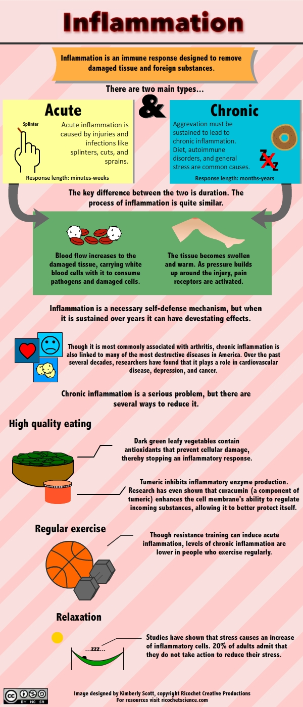 Infographic outlining inflammation and the differences between acute and chronic forms.