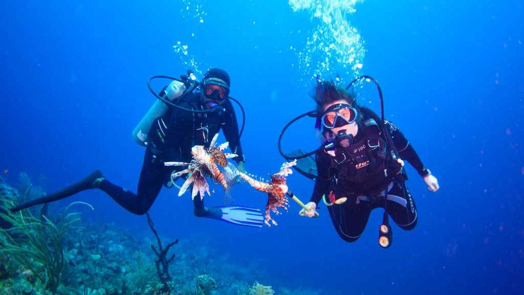 Diving_Lionfish_hunt_TOP_12