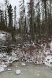 3. Fort McMurray_Birchwood Trails