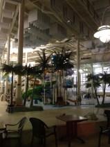 16. Syncrude aquatic centre