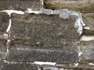 Castillo de San Marcos' coquina blocks close-up
