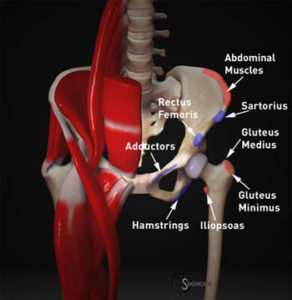 common-injury-sites