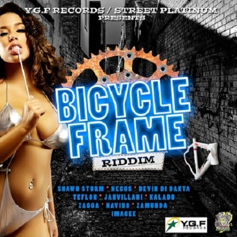 BicycleFrameRiddim2