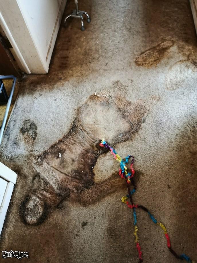 Dead body stain