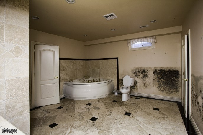 Bathroom in an abandoned mansion