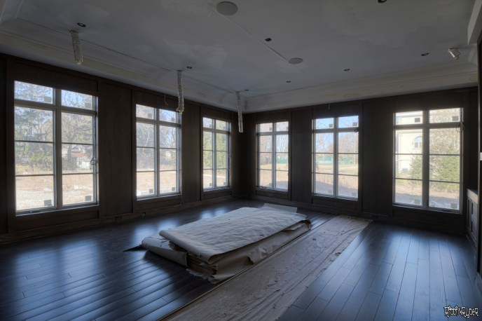 Vacant Mansion Library
