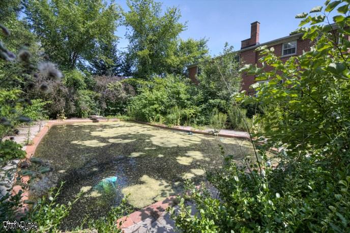 Swampy Pool