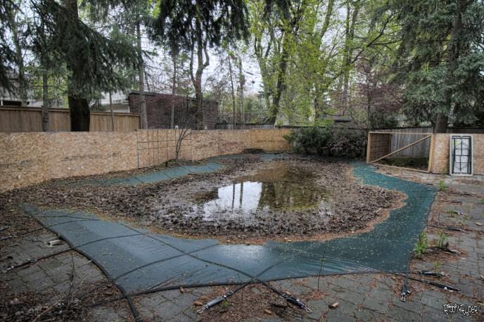 Abandoned Home Pool