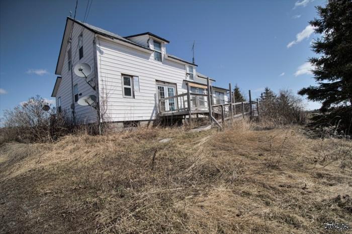 Abandoned Cat Lady House