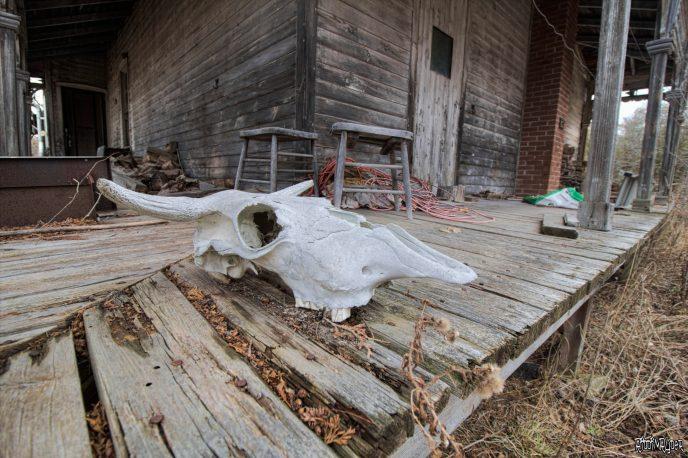 Abandoned House of Horrors