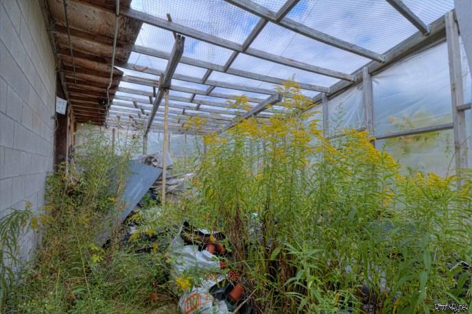 Garden Center of the grow op