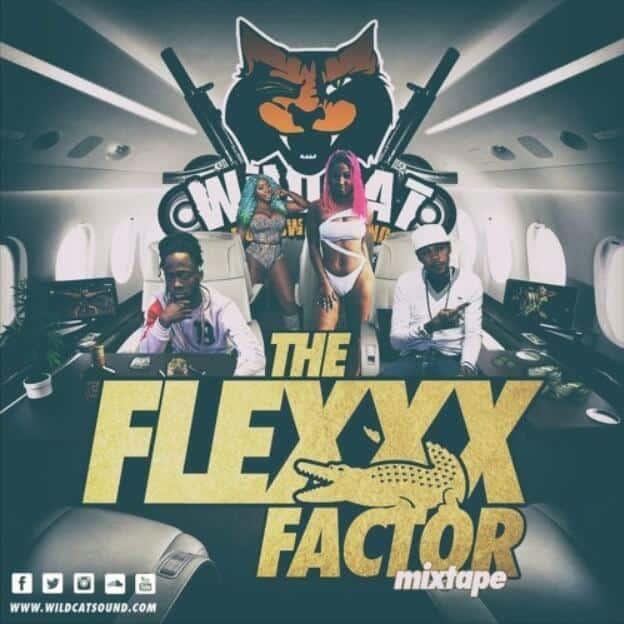THE FLEXX FACTOR MIXTAPE - WILDCAT SOUND | RIDDIMS WORLD