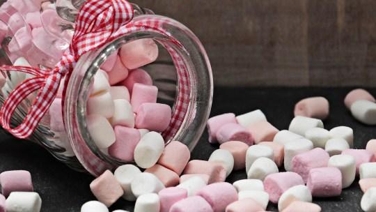 Votre prochaine Saint-Marshmallow